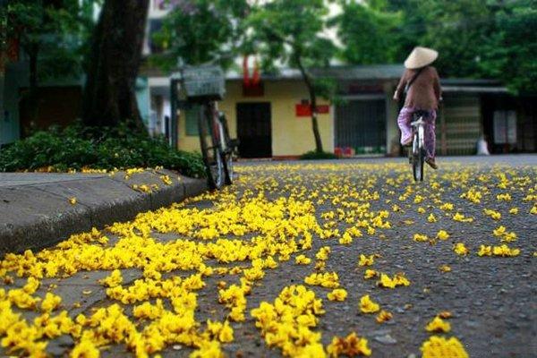 Mùa thu ở Huế