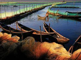 Du lịch Tuy Hòa : thông tin du lịch Tuy Hòa từ A – Z