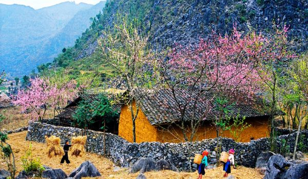Du lịch Hà Giang mùa nào đẹo nhất?